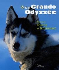 La Grande Odyssée : Profession : chiens de traîneaux