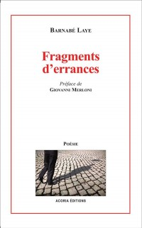Fragments d'errances