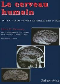 Le cerveau humain : Surface, Coupes sériées tridimensionnelles et IRM