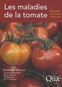 Maladies de la Tomate. Identifier, connaitre et maîtriser