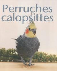 Perruche calopsitte