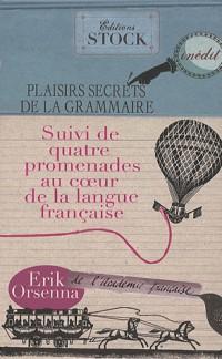 Plaisirs secrets de la grammaire