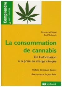 La consommation de cannabis : De l'information à la prise en charge