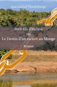 Petit-fils d'esclave ou le destin d'un esclave au Moogo