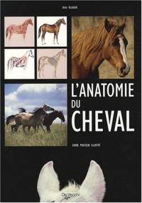 L'anatomie du cheval : Guide pratique illustré