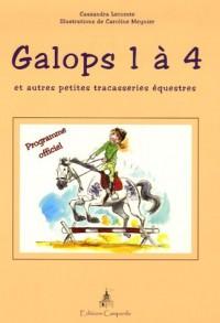 Galops 1 à 4 : Et autres petites tracasseries équestres