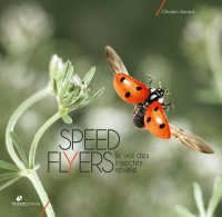 Speed flyers : Le vol des insectes révélé