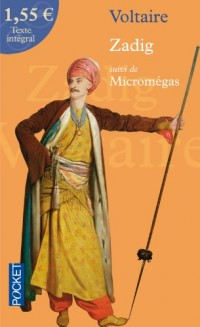 Zadig : Suivi de Micromégas