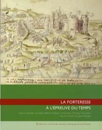 La forteresse à l'épreuve du temps : Destruction, dissolution, dénaturation, XIe-XXe siècle