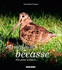 MYSTERIEUSE BECASSE