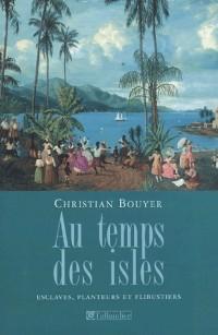 Au temps des isles : Les Antilles françaises de Louis XII à Napoléon III