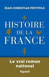 Histoire de la France (Divers Histoire)