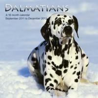 Dalmatiens Calendrier 2012 - Dalamatians 2012 Calendar