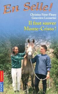 En Selle !, Tome 13 : Il faut sauver Monte-Cristo !