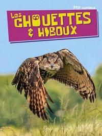 Chouettes et Hiboux (les)