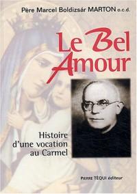 Le Bel Amour : Histoire d'une vocation au Carmel