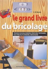 Le grand livre du bricolage : Travaux de maçonnerie, peinture, tapisserie, électricité, plomberie, menuiserie