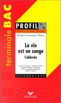 Profil d'une oeuvre : La vie est un songe, Calderon