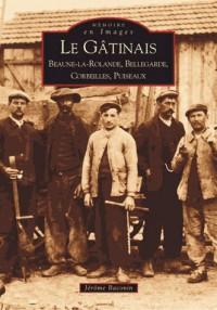 Le Gâtinais : Beaune-la-Rolande, Bellegarde, Corbeilles, Puiseaux