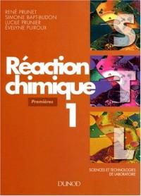 Réaction chimique, tome 1 : 1ère STL