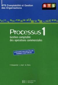 Processus 1 BTS Comptabilité et Gestion des Organisations