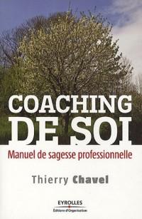 Coaching de soi : Manuel de sagesse professionnelle
