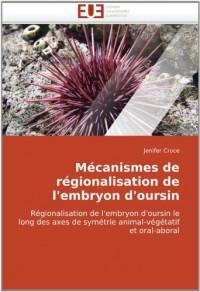 Mécanismes de régionalisation de l'embryon d'oursin: Régionalisation de l'embryon d'oursin le long des axes de symétrie animal-végétatif et oral-aboral