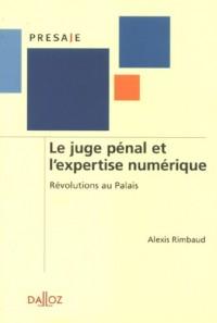 Le juge pénal et l'expertise numérique : Révolutions au Palais