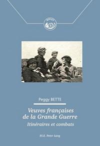 Veuves françaises de la Grande Guerre : Itinéraires et combats