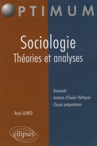Sociologie Theories & Analyses
