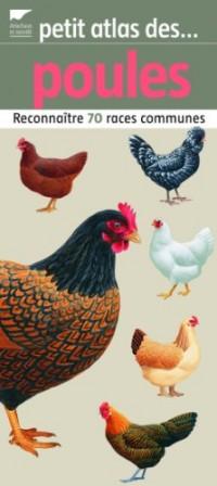 Petit atlas des poules : Reconnaître 70 races communes