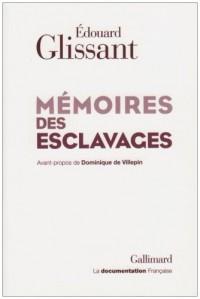 Mémoires des esclavages: La fondation d'un Centre national pour la mémoire des esclavages et de leurs abolitions
