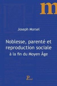 Noblesse, parenté et reproduction sociale à la fin du Moyen Age