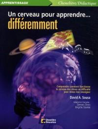 Un cerveau pour apprendre? différemment