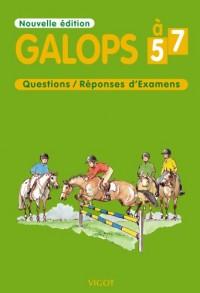 Galops 5 à 7 : Questions/Réponses d'Examens