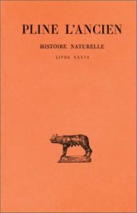 Histoire naturelle. Livre XXXVI