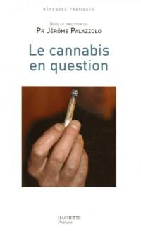 Le cannabis en question