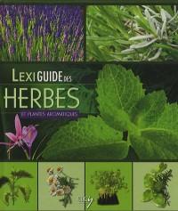 Lexiguide des herbes et plantes aromatiques