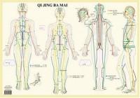 Qi Jing Ba Mai