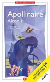 Alcools : Spécial Bac [Poche]