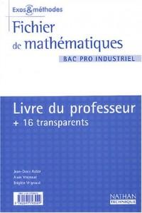 Mathématiques, Bac pro industriel (Manuel du professeur, transparents)
