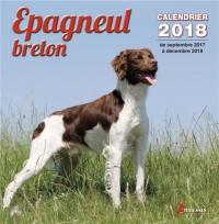 Epagneul breton 2018