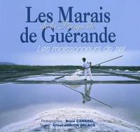 Marais de Guerande (les)