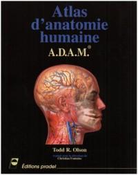 Atlas d'anatomie humaine : A.D.A.M.