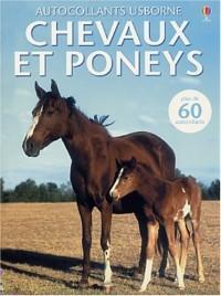 Chevaux et poneys : Plus de 60 autocollants