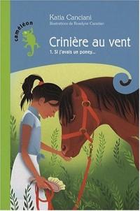 Crinière au vent, Tome 1 : Si j'avais un poney...