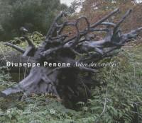 Giuseppe Penone au Louvre : l'Arbre des voyelles
