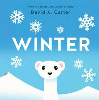 Winter : A Pop-Up Book