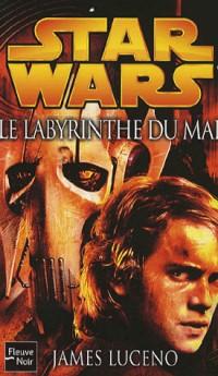 Le Labyrinthe du mal