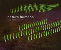 Natura Humana : Installations réalisées en extérieur
